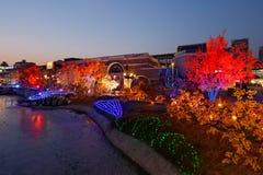 Dla nowego roku kolorowi światła Obraz Royalty Free