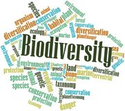 Dla Różnorodności biologicznej słowo chmura Zdjęcia Royalty Free