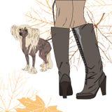 Dla spaceru z psem Obraz Stock