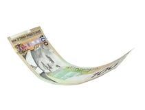 Dólar canadiense que vuela Fotos de archivo
