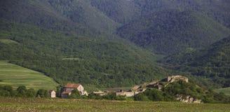 Dmanisi古老堡垒和教会包围与森林盖了山 免版税库存照片