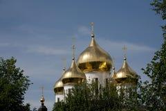 Dmitrov克里姆林宫的金黄圆顶 免版税库存图片