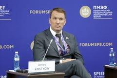 Dmitry Kostygin Immagini Stock Libere da Diritti