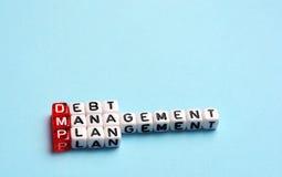 DMP Debt Management Plan. Written on cubes on blue background Stock Image