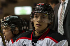 Dmytro QMJHL stock photos