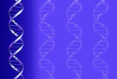 DNA ανασκόπησης Στοκ Φωτογραφίες