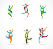 DNA, γενετικό σύμβολο - εικονίδιο ανθρώπων, ανδρών και γυναικών διανυσματική απεικόνιση