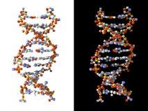 DNA κύβων που γίνεται Στοκ Εικόνα