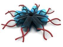 DNA στις κάψες διανυσματική απεικόνιση