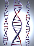 DNA 1 Stock Images