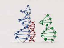 DNA. Structure Stock Photo