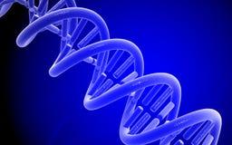 DNA Stock Afbeeldingen
