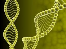 DNA. Digital illustration of DNA structure in 3d on COLOR background Royalty Free Stock Image