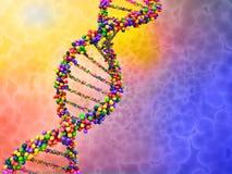 DNA Στοκ φωτογραφία με δικαίωμα ελεύθερης χρήσης