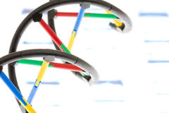 DNA. Model on print out of  sequence royalty free stock photography