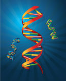 DNA. Spiral with a blue background for genetic research or something else Royalty Free Stock Photography