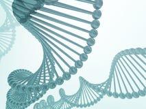 DNA 2 ελεύθερη απεικόνιση δικαιώματος