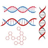 Dna 2. Vector design element of a DNA Royalty Free Stock Photography