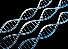 DNA Immagini Stock Libere da Diritti