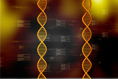 DNA Royalty Free Stock Photos