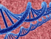 DNA. 3d render of dna on blue background Royalty Free Illustration