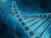 DNA Fotografia Stock Libera da Diritti