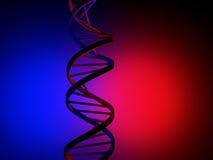 DNA. Strand over blue and red background vector illustration