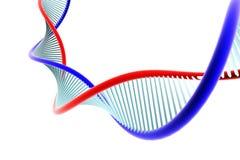 DNA Στοκ Φωτογραφία