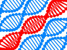 DNA Royalty Free Stock Photography
