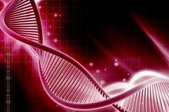 DNA Στοκ εικόνες με δικαίωμα ελεύθερης χρήσης