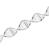 Dna. Double helix structure of dna Royalty Free Stock Photos