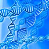 DNA. 3d model of DNA on a blue background Royalty Free Stock Photo