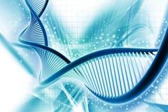 DNA απεικόνιση αποθεμάτων
