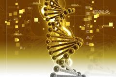 DNA Royalty Free Stock Photo