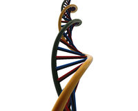 DNA royalty illustrazione gratis