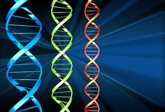 DNA x 3. Three DNA strands of different colours Stock Images