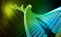 DNA Lizenzfreie Stockbilder