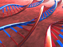 DNA. Three Frame of DNA over the warm background Royalty Free Stock Photo