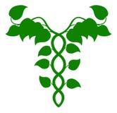 Ολιστικό κηρύκειο ιατρικής ή έννοια DNA Στοκ φωτογραφία με δικαίωμα ελεύθερης χρήσης