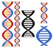 DNA ελεύθερη απεικόνιση δικαιώματος