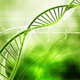 DNA. 3d Digital illustration of DNA vector illustration