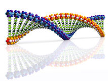 DNA 3d concept Royalty Free Stock Photo