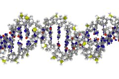 DNA. Computer rendering of DNA molecule on a white background Stock Photo