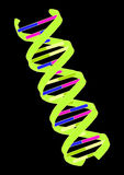 DNA. Crossed double Helix DNA strand in black background Royalty Free Stock Photos