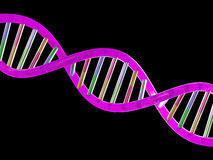 Dna Stock Photography