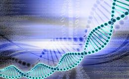 DNA Lizenzfreies Stockfoto