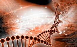 DNA fotos de archivo