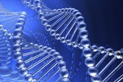DNA Stock Image