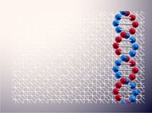 DNA illustrazione vettoriale