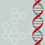 Dna. Vector illustration of a DNA Stock Photo